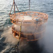Marine growth removal & cleaning